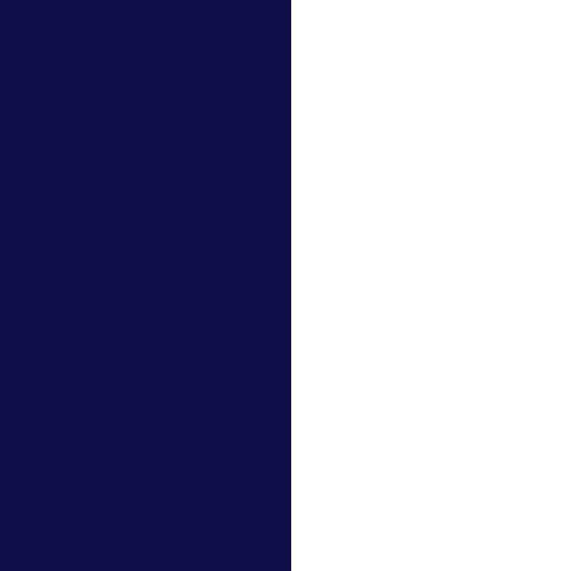 bicolore bleu marine