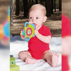 Body bébé uni 100% coton - Manches courtes - 6 coloris